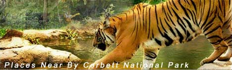 Places To Visit Near By Corbett National Park